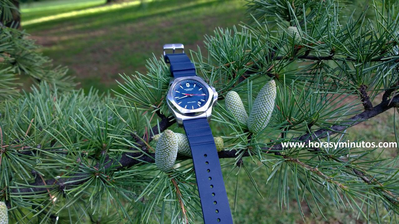 Victorinox INOX azul otoño