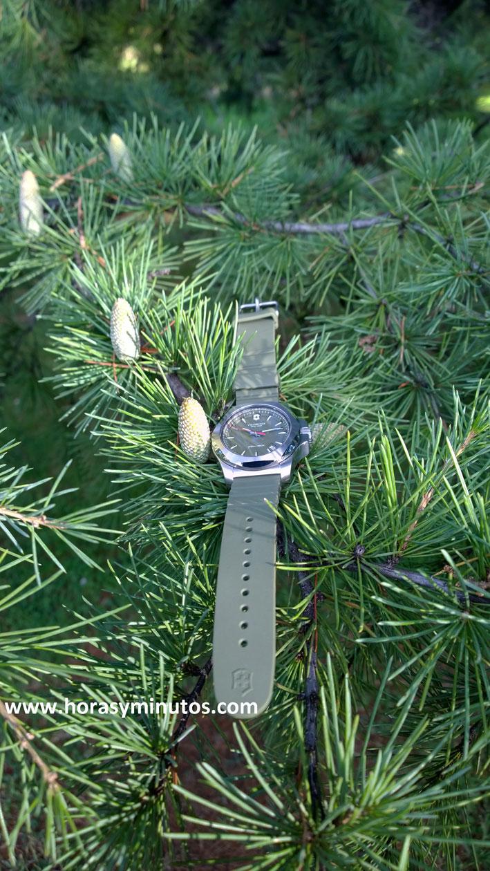 Victorinox INOX verde otoño