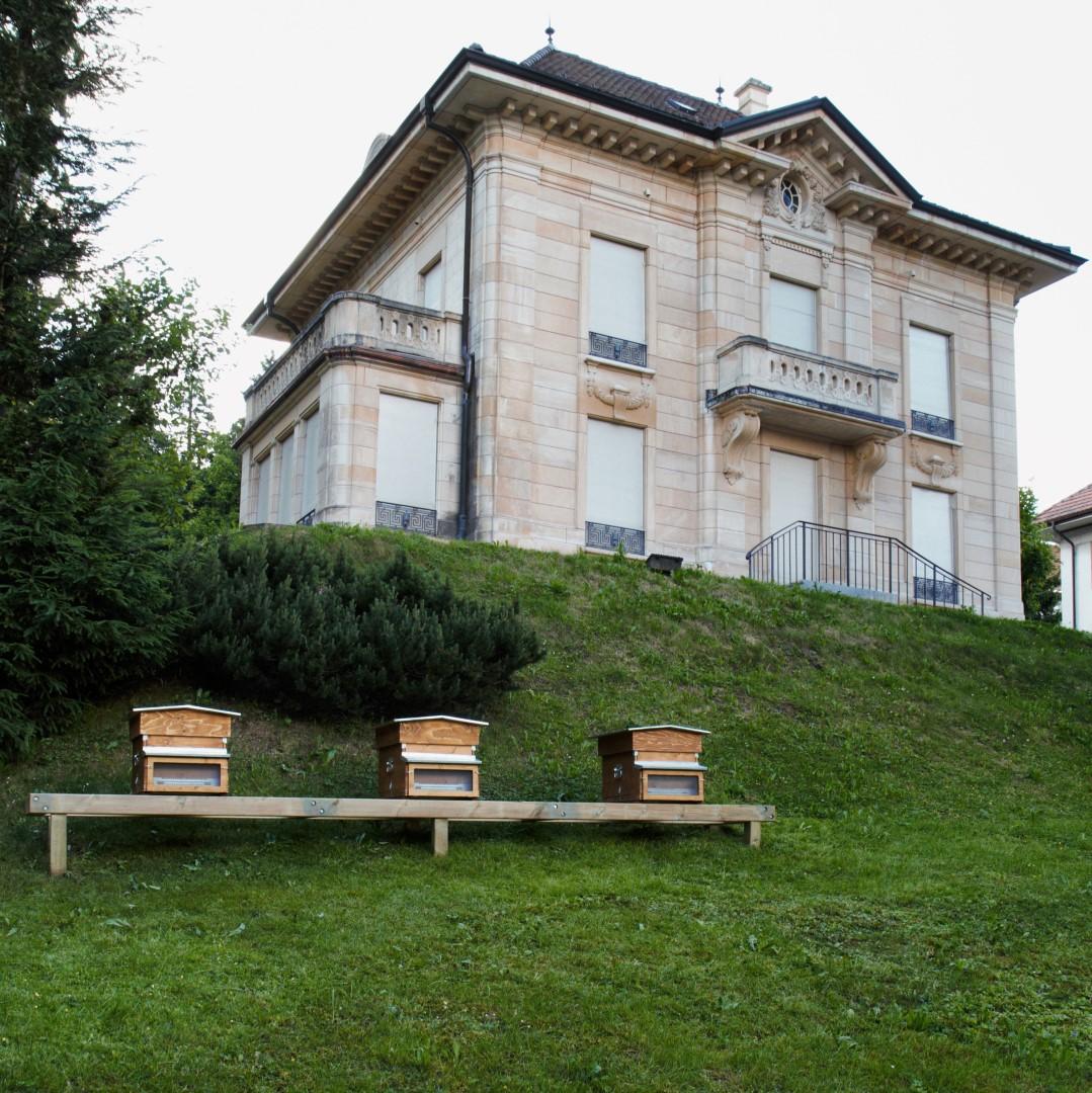 Panales delante de Villa Marguerite, el Museo Girard-Perregaux