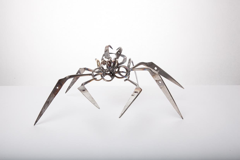 Araña tijera