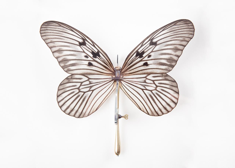 Mariposa papel de arron con muelle