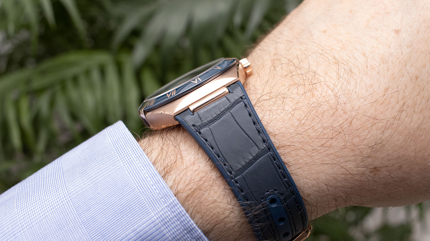 Perfil del Omega Constellation Gent's Collection
