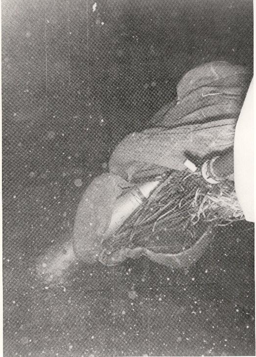 Foto de la bomba atómica sumergida con su paracaídas